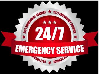 emergency vet hospital